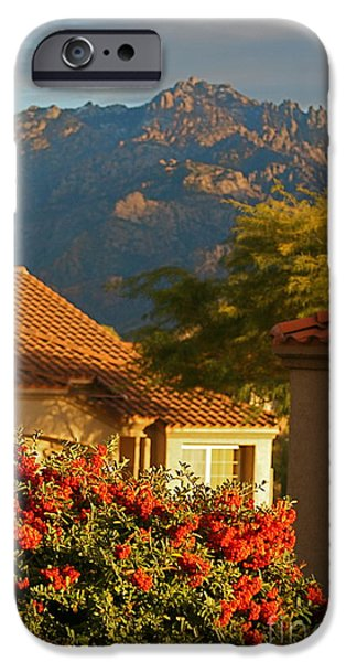 Rooftop iPhone Cases - Tucson Beauty iPhone Case by Nadine Rippelmeyer