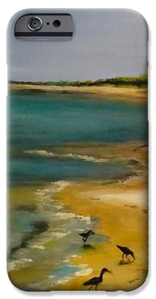 Sand iPhone Cases - Tuesday morning at Horn Island iPhone Case by Leslie Dobbins