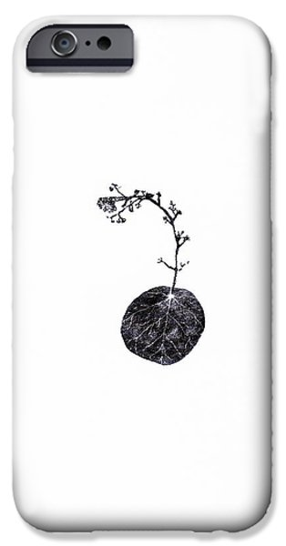 Lichens iPhone Cases - Tug iPhone Case by Bella Larsson