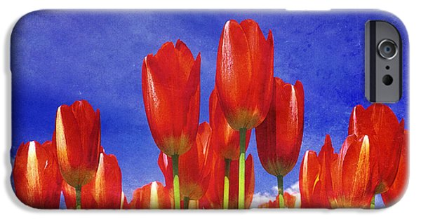Crops iPhone Cases - Tulip 38 iPhone Case by Ingrid Smith-Johnsen