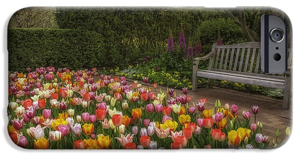 Sears Tower iPhone Cases - Tulip Garden iPhone Case by Julie Palencia