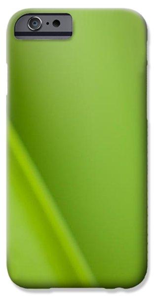 Tulip iPhone Case by Silke Magino