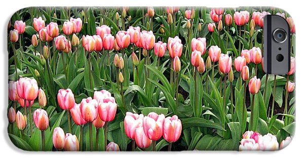 Town iPhone Cases - Tulip Town 8 iPhone Case by Will Borden