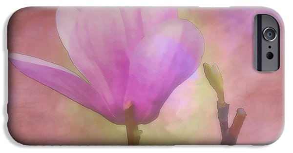 Tree Art Print iPhone Cases - Tulip Tree Bloom and Bud iPhone Case by Larry Bishop