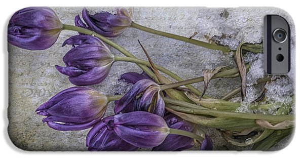 Renewing iPhone Cases - Tulips Frozen iPhone Case by Terry Rowe