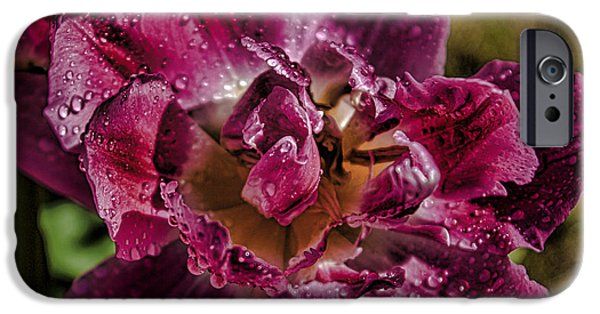 Garden iPhone Cases - Tulips iPhone Case by Martin Newman