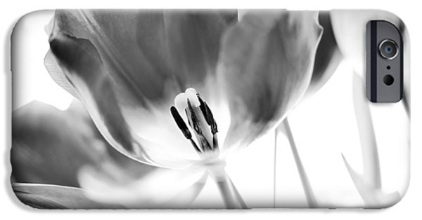 Flower iPhone Cases - Tulips iPhone Case by Silke Magino