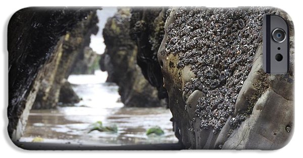 Rincon Beach iPhone Cases - Tunnels of Wild Ones iPhone Case by Beth Cox
