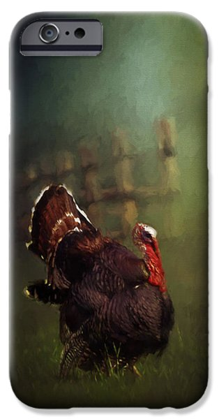 Gobbler iPhone Cases - Turkey iPhone Case by David and Carol Kelly