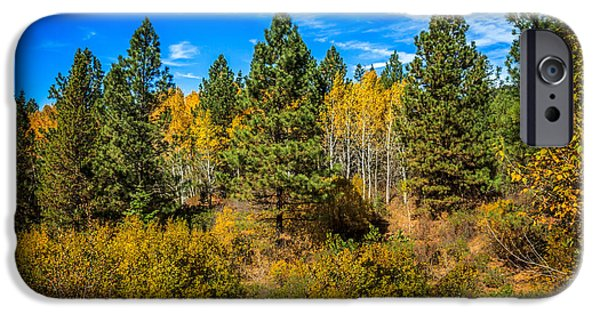Fall iPhone Cases - Turning Aspen iPhone Case by Robert Bales