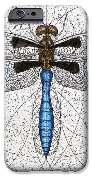 Twelve Spotted Skimmer iPhone Case by Charles Harden