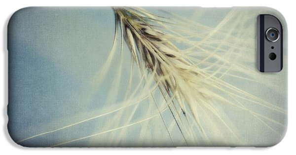 Plant iPhone Cases - Twirling iPhone Case by Priska Wettstein