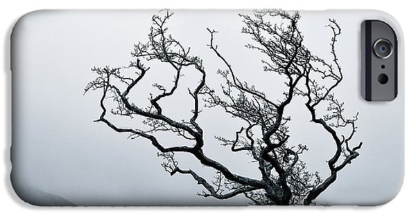Fog Mist iPhone Cases - Twisted iPhone Case by Dave Bowman