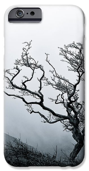 Twisted iPhone Case by Dave Bowman