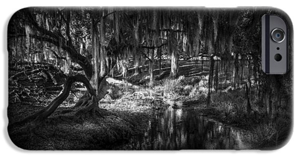 Winter Storm iPhone Cases - Twisted Oak iPhone Case by Marvin Spates