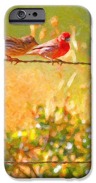 Wing Tong Digital iPhone Cases - Two Birds On A Wire iPhone Case by Wingsdomain Art and Photography