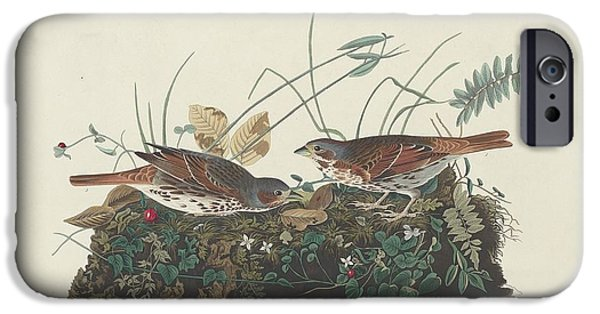 Sparrow iPhone Cases - Two-Colored Sparrow iPhone Case by John James Audubon