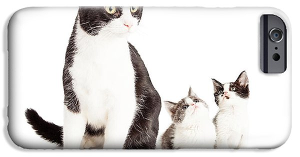 Domestic Short Hair Cat iPhone Cases - Two Cute Kittens Looking Up At Mom Cat iPhone Case by Susan  Schmitz