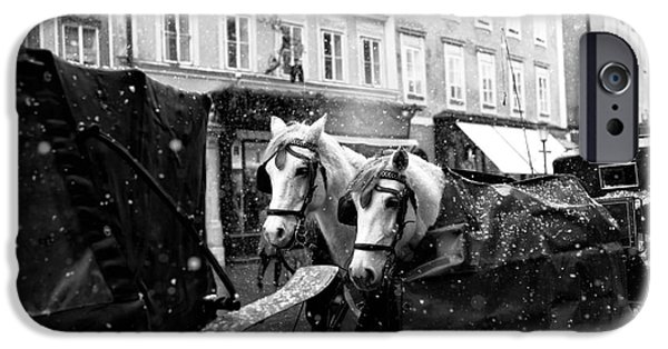 Horse And Buggy iPhone Cases - Two Horses in Salzburg iPhone Case by John Rizzuto