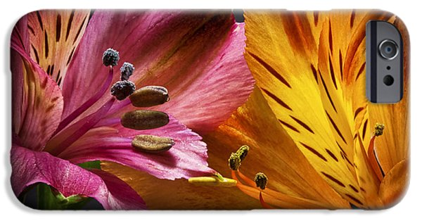 Floral Photographs iPhone Cases - Two Lilies iPhone Case by Kurt Golgart