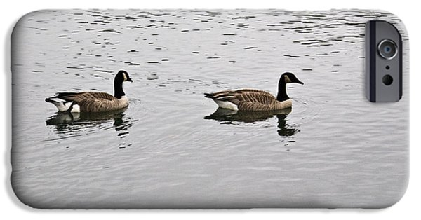 Arkansas iPhone Cases - Two Lovely Canadian Geese iPhone Case by Douglas Barnett
