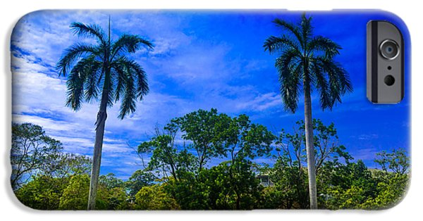 Beach Landscape iPhone Cases - Two palm trees iPhone Case by Prasad Sirinayake