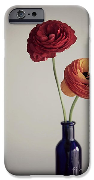 Poetic iPhone Cases - Two ranunculus iPhone Case by Donatella Loi