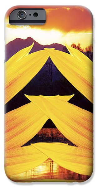 Two Sunflower Sunset iPhone Case by James BO  Insogna