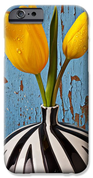 Wet Petals iPhone Cases - Two Yellow Tulips iPhone Case by Garry Gay