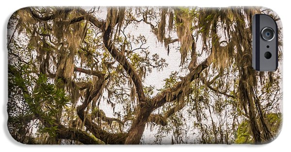Overhang iPhone Cases - Under the shade of a live oak - artistic iPhone Case by Chris Bordeleau