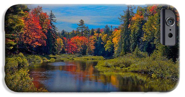 Fall iPhone Cases - Upper Branch of the Moose in Autumn iPhone Case by David Patterson