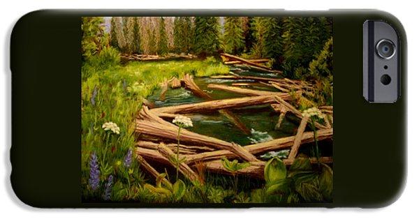 Deschutes River iPhone Cases - Upper Deschutes iPhone Case by Nancy Jolley