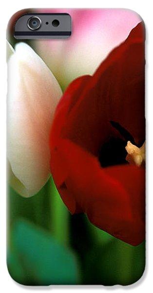 Valentine Tulips iPhone Case by Kathy Yates