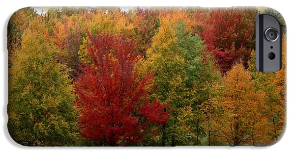 Change Paintings iPhone Cases - Vermont Drive iPhone Case by Mindy Sommers