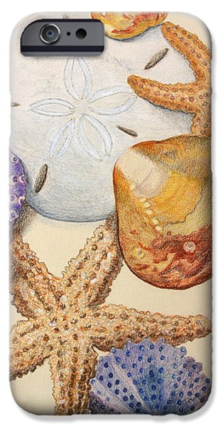 Vertical Starfish iPhone Case by Glenda Zuckerman