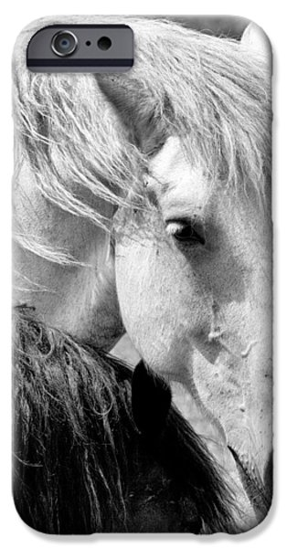 The Horse iPhone Cases - Vice Versa Bw iPhone Case by Luc Bovet