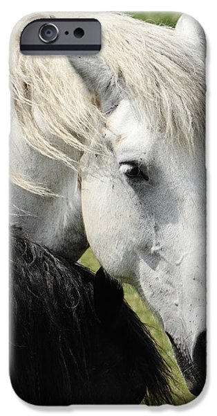 The Horse iPhone Cases - Vice Versa iPhone Case by Luc Bovet