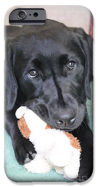 Cute Puppy iPhone Cases - Vicki and Her Toy iPhone Case by Vicki Spindler