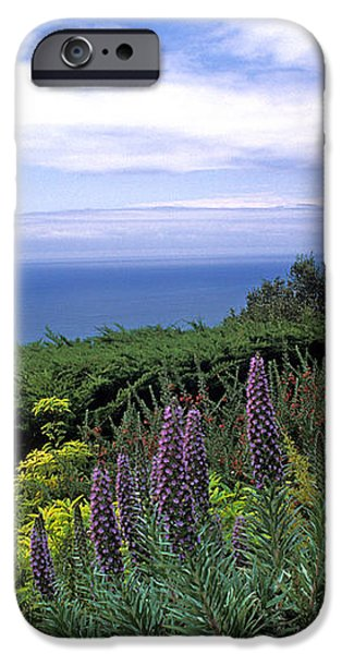 View from Ventana Big Sur iPhone Case by Kathy Yates
