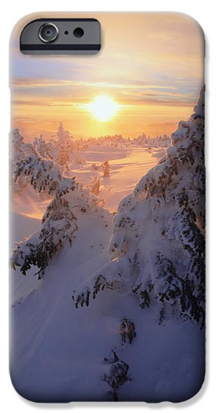 View Of Snow-covered Trees At Mont iPhone Case by Yves Marcoux