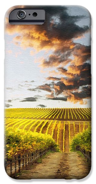 Vineard Aglow iPhone Case by Sharon Foster