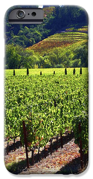 Vineyards in Sonoma County iPhone Case by Charlene Mitchell