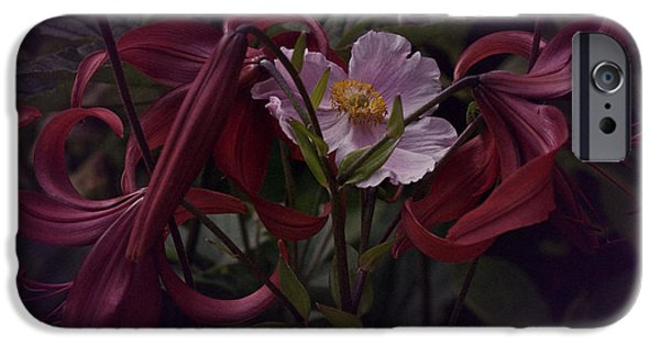 Asiatic Lily iPhone Cases - Vintage Asiatic Lilies  iPhone Case by Richard Cummings
