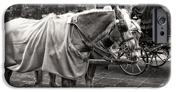 Horse And Buggy iPhone Cases - Vintage Horses in Salzburg iPhone Case by John Rizzuto