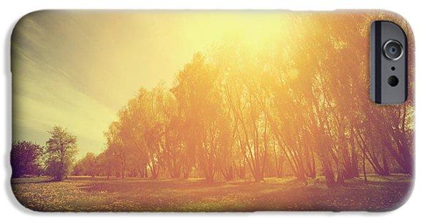 Morning iPhone Cases - Vintage spring sunny park iPhone Case by Michal Bednarek