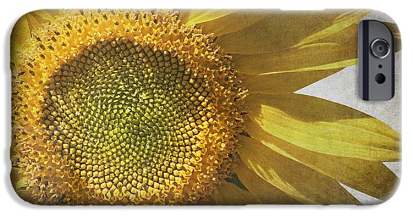 Nature Abstract iPhone Cases - Vintage sunflower iPhone Case by Jane Rix