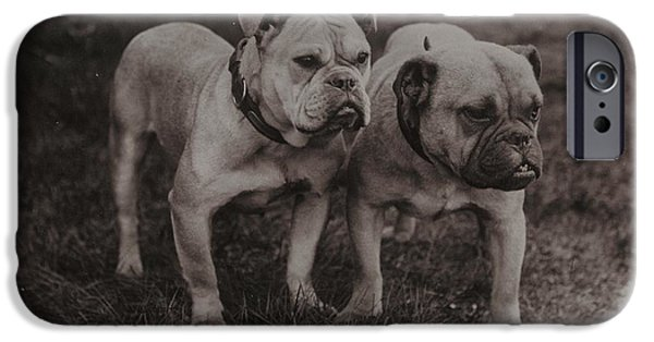 Boxer Dog iPhone Cases - Vintage Two Bulldogs iPhone Case by Gillham Studios