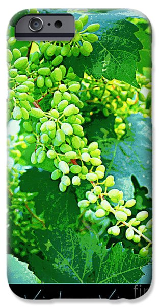 Vintage Vines  iPhone Case by Carol Groenen
