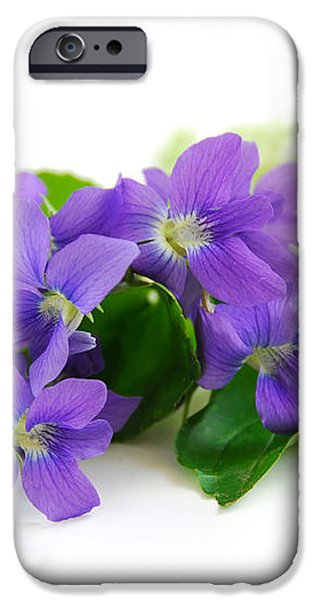 Violets on white background iPhone Case by Elena Elisseeva