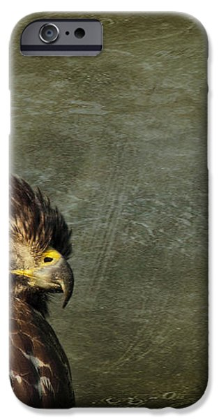 Visions of Solitude iPhone Case by Evelina Kremsdorf
